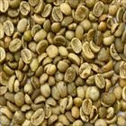 WASHED ARABICA GREEN COFFEE BEANS GRADE 1 SCREEN 16