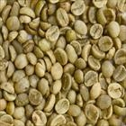 WASHED ARABICA GREEN COFFEE BEANS GRADE 2 SCREEN 13