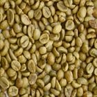UNWASHED ROBUSTA GREEN COFFEE BEANS GRADE 1 SCREEN 18