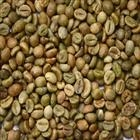 UNWASHED ROBUSTA GREEN COFFEE BEANS GRADE 2 SCREEN 13