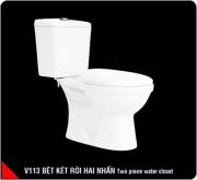 V113 (S-trap)B