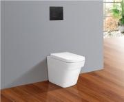 Concealed Cisterns Toilets V50