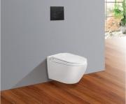 Concealed Cisterns Toilets V51KA